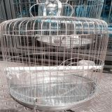 Chrome Coated Steel Wire Bird Cage