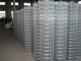 Low Price Galvanized Welded Wire Mesh & Professional Factory
