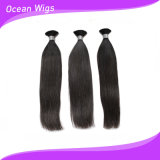 Various Beautifull Human Remy Hair Bulk Straight Type