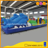 New Design Inflatable Porpoise Dolphin Inflatable Obstacle Course for Sale (AQ14138-1)