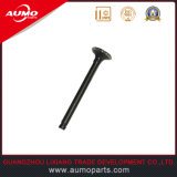 Exhaust Valve for Chinese 50cc Scooters Engine Parts