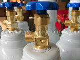 Qf-2c1 Cylinder Valve for Iranian Market