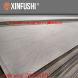 Baltic Birch Plywood for Europe Market