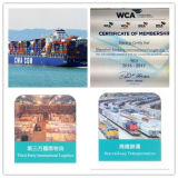 Maersk Fast Sea Freight Servvice From China to Lebanon