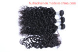Wholesale Price Water Wave Indian Virgin Hair Bundles with Three Part Frontal