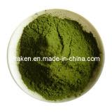 Water-Soluble Barley Grass Juice Powder