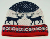 Colourful Jacquard Winter Knitted Hat (HY17110955)