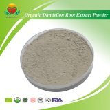 High Quality Organic Dandelion Root Extract Powder