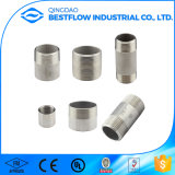 DIN Standard Stainless Steel NPT Thread Pipe Nipple