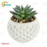 Wholesale Cheap Real Touch Wonderful Assorted Artificial Succulent Plants