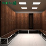 Jialifu Customized Gym Storage Cabinets