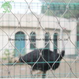 Hebei Stainless Steel Aviary Netting Large Bird Cages
