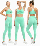 Tracksuit Club Team Unique Yoga Fitness Clothes Vest Gigh Waisted Gym Wear Sexy T-Shirt Tracksuit Clothes Set Sports Bra for Women Apparel