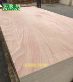 12mm~18mm Wall Panel Building Material Cheap Commercial Plywood for Furniture