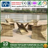 Outdoor Furniture Garden Dining Table Set for Garden (TG-1655)