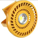 30W-50W Best Price Warm Color LED Explosion Proof Lighting