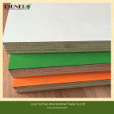 Hardwood Core HPL Coated Plywood