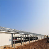 One stop poultry farm constructor from Qingdao China