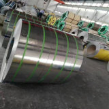 Stainless Steel Strip Coil SUS 316 Reasonable Price