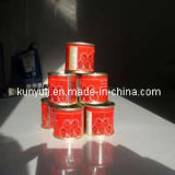 Canned Tomato Paste 70g with High Quality