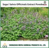 Factory Supply Medicinal Ingredient Sage Powder Extract 5: 1, 10: 1