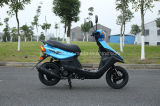 New Model 124cc Gasoline Scooter Hot Sell/Big Powerful