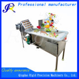 Industrial Fruit Vegetable Processing Machinery Washing Cutting Packing Machine