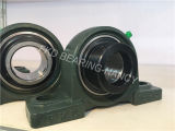 Pillow Block Bearing Units with Eccentric Locking Collar