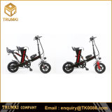 Two-Seat Electric Bike Battery Electric Foldable Bicycle