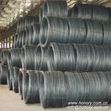 Tensile Testing Good Hot Rolled Steel Wire Rod in Coils