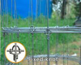 Hot DIP Galvanized Grassland Fence