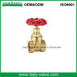 Hot Selling Brass Forging 300wog Gate Valve (AV4047)