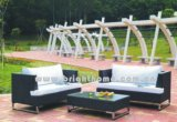 Outdoor Garden Rattan Furniture (BL-019)