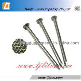 Manufacturer Checkered Head Polished Common Nails