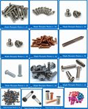 OEM Customised/Standard Stainless Steel Brass Aluminum Screw