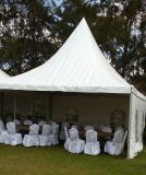 3X3, 4X4, 5X5, Outdoor Pagoda Tent, Canopy Tent, Party Tent