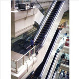 Outdoor Escalator with Good Quality Competitive Price Duty Vvvf Sum-Elevator