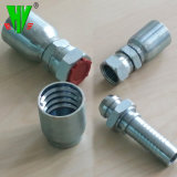 Competitive Price Hose Couplings & Fittings Hydraulic Tube Fittings Pipe Connections