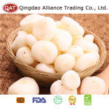 Top Quality Frozen Peeled Water Chestnut