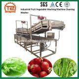 Wash Line Fruit Vegetable Washer Salad Washing Machine with Bubble Ozone