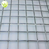 Stainless Steel/Iron Crimped Wire Mesh Panel