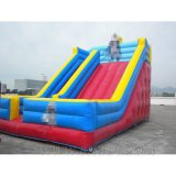Inflatable Slides, Water Slides, Theme Slide Inflatables (B4075)