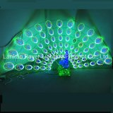 Dynamic Lighting LED Peacock Large Outdoor Novelty Park Decoration Lights