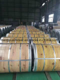 Ral PPGI Color Coated Steel Coil with Precision Export Packing