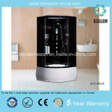 Best Selling 5mm Tempered Glass Steam Massage Complete Shower Room (BLS-9822B)