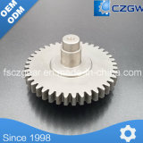 High Precision Customized Transmission Gear Casting Gear for Various Machinery