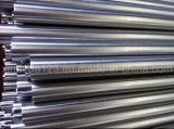 Polished Stainless Steel Pipe and Tube