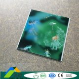 Waterproof Fireproof Building Materials Ceiling Panel PVC From Factory PVC Ceilings DC-412