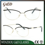 New Design Metal Glasses Eyewear Eyeglass Optical Frame Double Color Frames 9020
