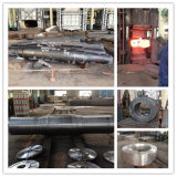 Forgings Ring/Shaf/Cylinder Fundamentals of Manufacturing Simple and Complex Huge Spareparts
